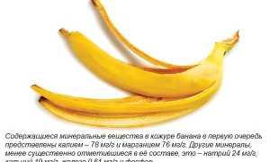 Удобрение из банановой кожуры для цветов: подкормка, настой, полив