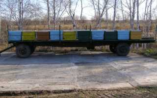 Преимущества прицепа для перевозки ульев