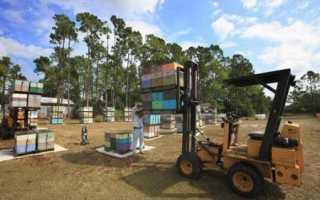 Ведение кочевого кассетного пчеловодства