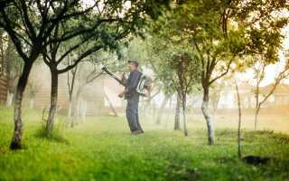 Препараты для весенней обработки сада – обзор и правила использования, видео