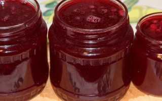 Варенье из барбариса: полезные свойства, как сварить, рецепты