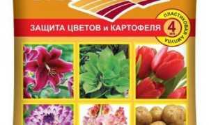 Препарат Максим: инструкция по применению, обработка растений