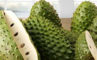 Сметанное яблоко: вкусовые особенности тропического фрукта