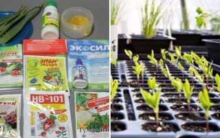 Регулятор роста растений Коренастый – применение, доза, видео