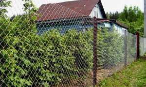 Как и из чего сделать забор на даче своими руками