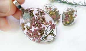 Озотамнус: рисовый цветок для красивых композиций