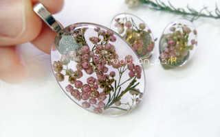 Озотамнус — рисовый цветок для создания цветочных композиций