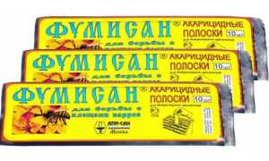 Препарат Фумисан для поддержания здоровья пчел